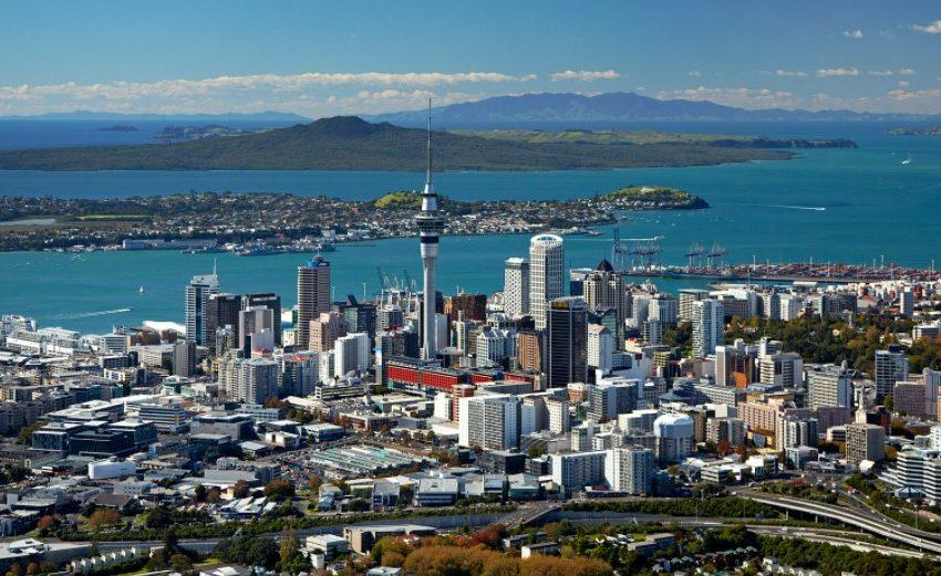 3 New Zealand Business Opportunities