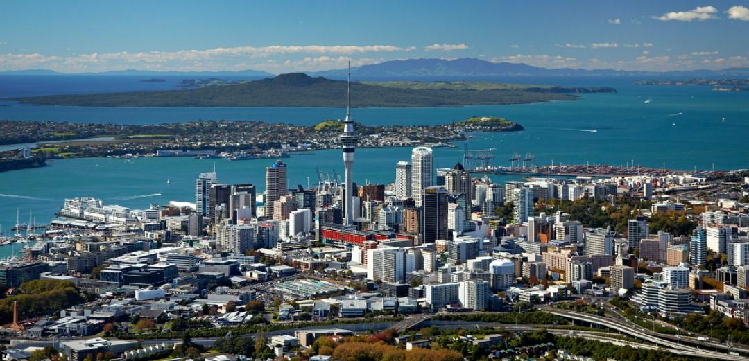 New Zealand Business Opportunities