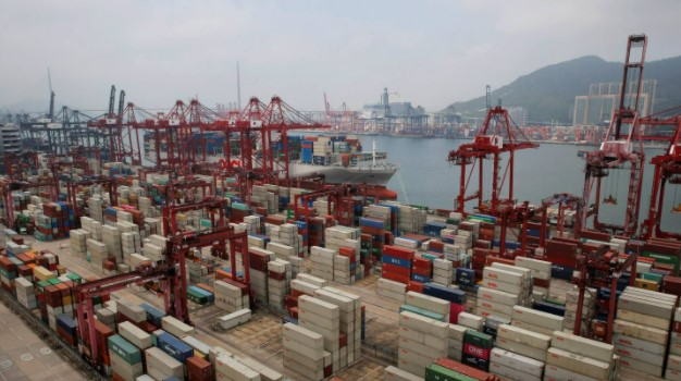 The Hustle and Bustle of Global Shipping in New Zealand